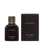 Dolce&Gabbana Pour Homme Intenso tester,